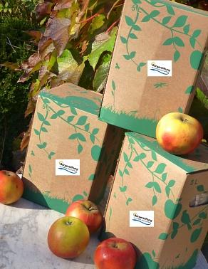 Apfelsaftpaket©Bürgerstiftung im Landkreis Nienburg