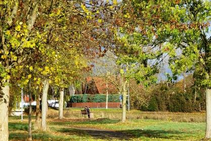 Bürger im Park©Bürgerstiftung im Landkreis Nienburg